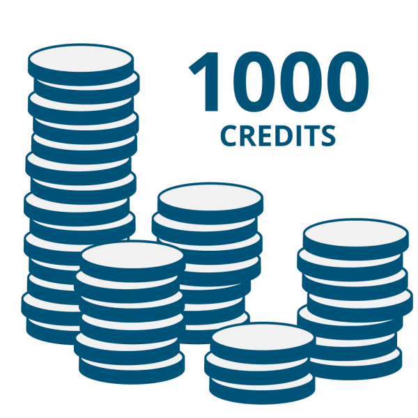 """Guthaben für Onlinecode-Funktion der """"E Code"""" Produkte: 1000 Credits"""